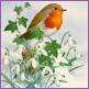 Among the Snowdrops - Robin/Limited edition print