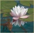Waterlily-oil painting